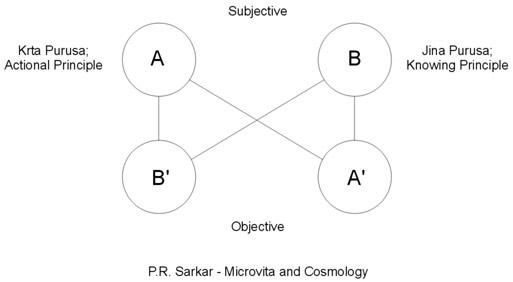 r in a nutshell pdf